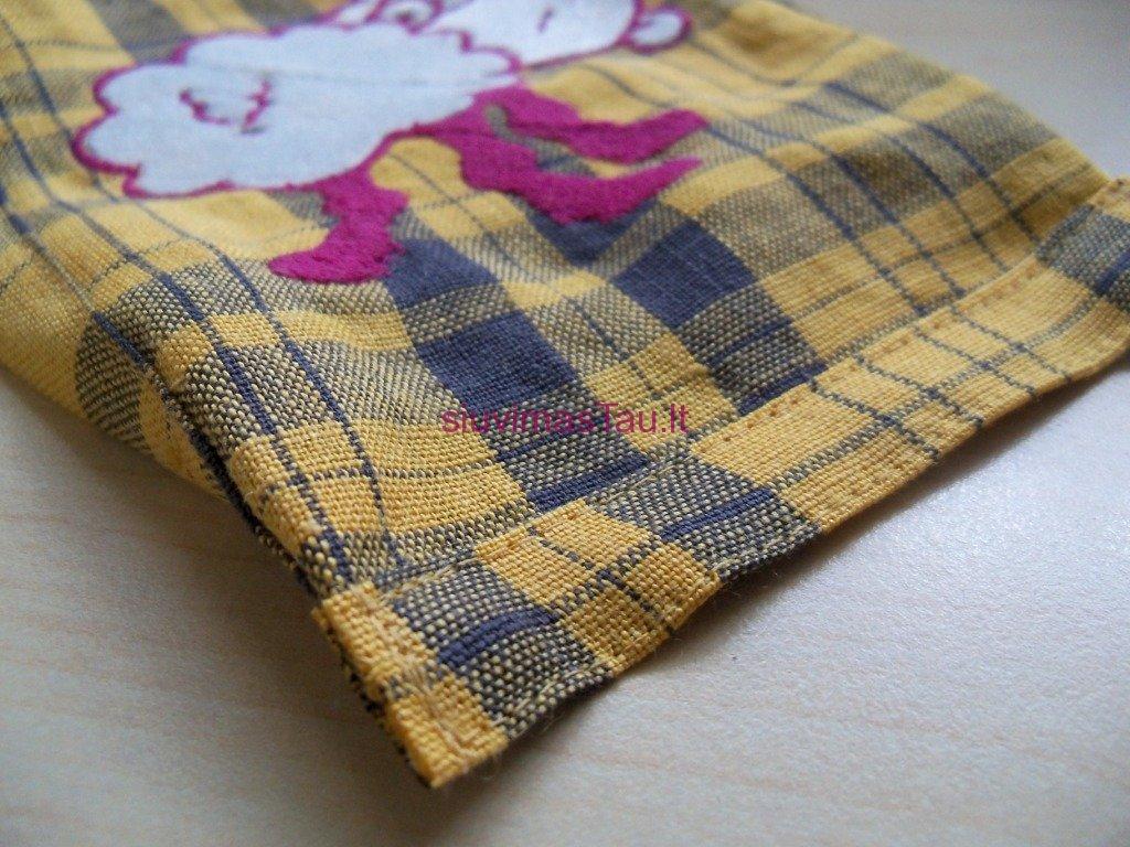 Mazos damos rankinukas (3)